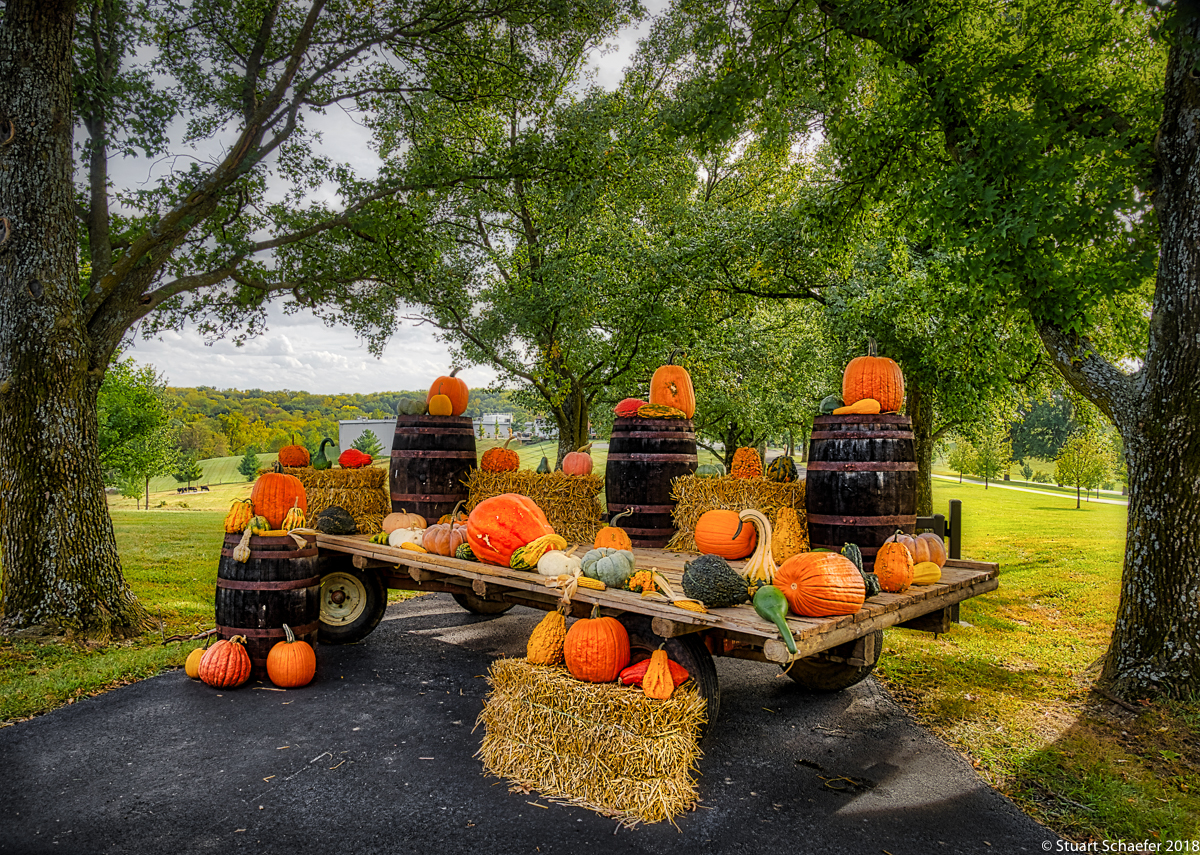 The Pumpkin Cart